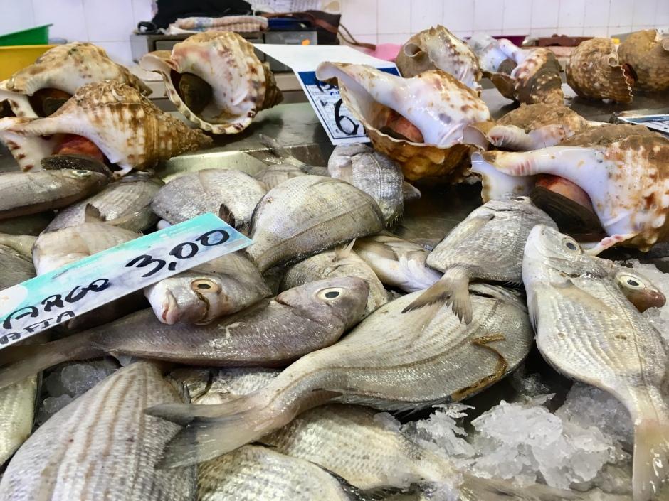 Olhão Fish Market .jpg