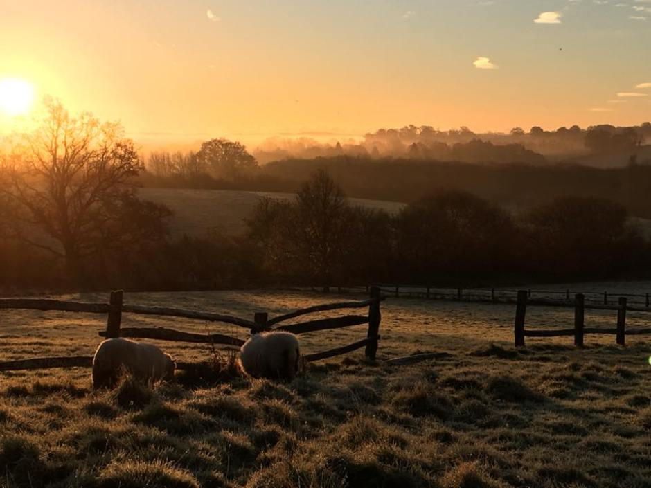 Morning setting over the valley - my own photo